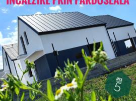 Exceptionala Vila moderna concept nou tip scandinav Berceni