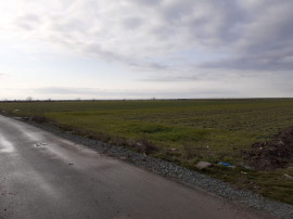 Teren parcelabil - 567 mp parcela Adunatii Copaceni 4000 ...