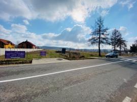 Teren intravilan 6966mp, situat în Comuna Runcu, sat Răchiți