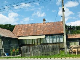 Casa Paltinoasa