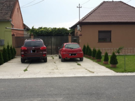 2 case in acceasi curte cu multa verdeata in Santana-Arad