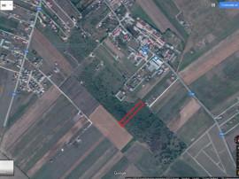 Teren intravilan în Bod lângă Dacia Plant 5000mp