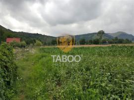 Teren intravilan 5000 mp de in Sebesel cu proiect hala