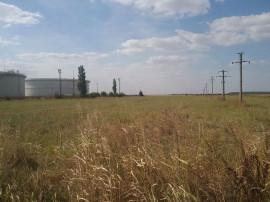 Teren extravilan agricol 5,000 mp Calareti