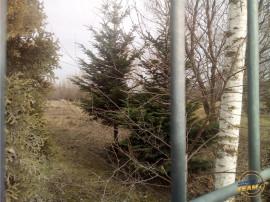 900 mp teren, intre case, Sanpetru, Brasov, destinat unei vi