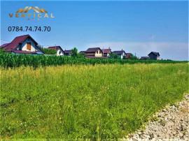 Lot teren-RATE- 339mp- Calugareni- Comuna Berceni