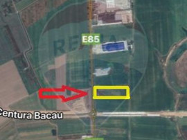 Teren 7500 mp, E85- Nicolae Balcescu
