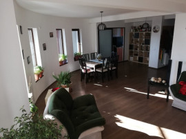 Berceni -Comuna-Cartierul nou, la intrare, vila S+ P+1+M