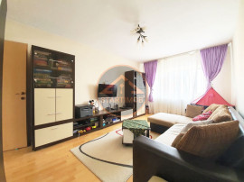 Apartament mobilat doua camere Scriitorilor