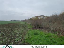 Teren 2 ha la iesire spre Timisoara - ID : RH-23157-property