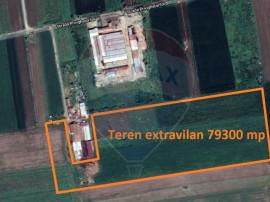 De vânzare teren extravilan în Curtici, pretabil fermă