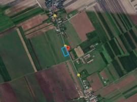 Teren Ulmi / Trestieni, 4.000 mp, D: 90 m