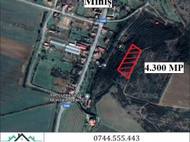 Teren 4.300 mp. in Minis - ID : RH-26414-property
