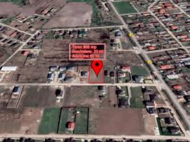 Teren lot casa 800 MP (20 pe 40 ml) in Central in Darza