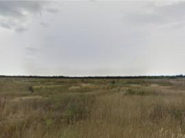 Terenuri Zona Selgros Craiova - proprietar 1031 mp