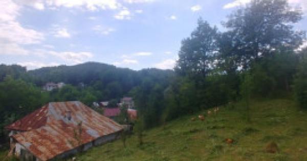 Teren Breaza 4200 mp