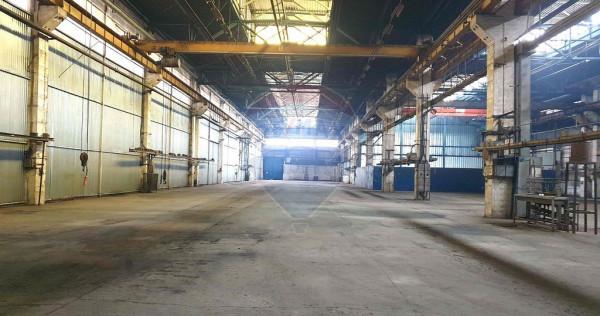 Hale productie si depozitare Tractorul, Brasov