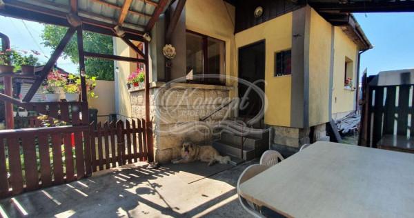 Casa individuala in zona Kaufland-Marasti