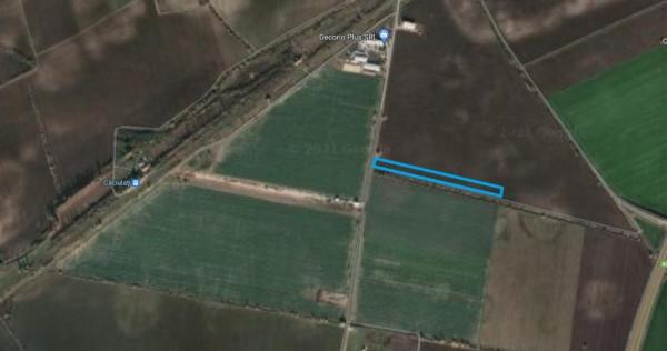 Teren Caciulati/Linia Teilor , 6.300 mp, comision 0%