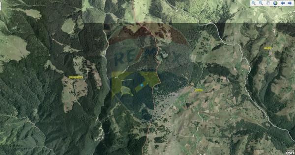EXCLUSIVITATE! Teren împădurit 15000 mp/ Dâmbovicioara...