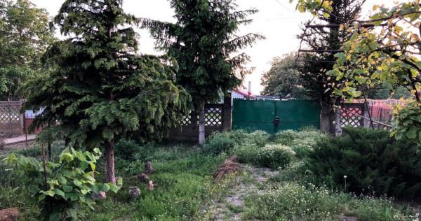 Casa batraneasca cu teren casa Frumusani - Buciumeni