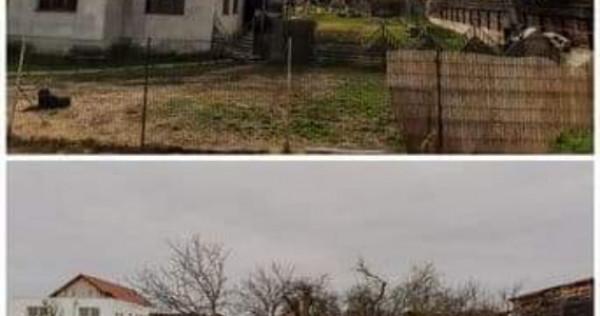 Doua proprietati + teren Sinicolaul mic Aradul Nou
