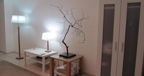 Apartament 1 camera ieftin in Pipera