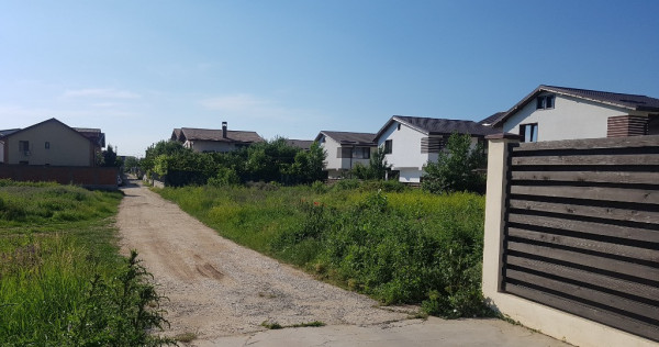 Teren Chiajna Rosu, strada Viilor, 800 mp