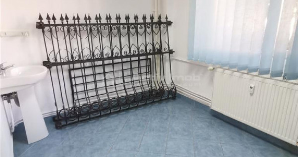 Teiul Doamnei, apartament 2 camere, cabinet medical, salon