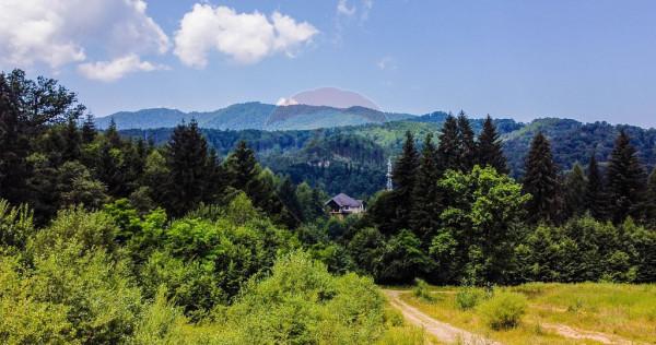 De vanzare! Teren 5000 mp, Sacele - zona Baciu, jud. Brasov